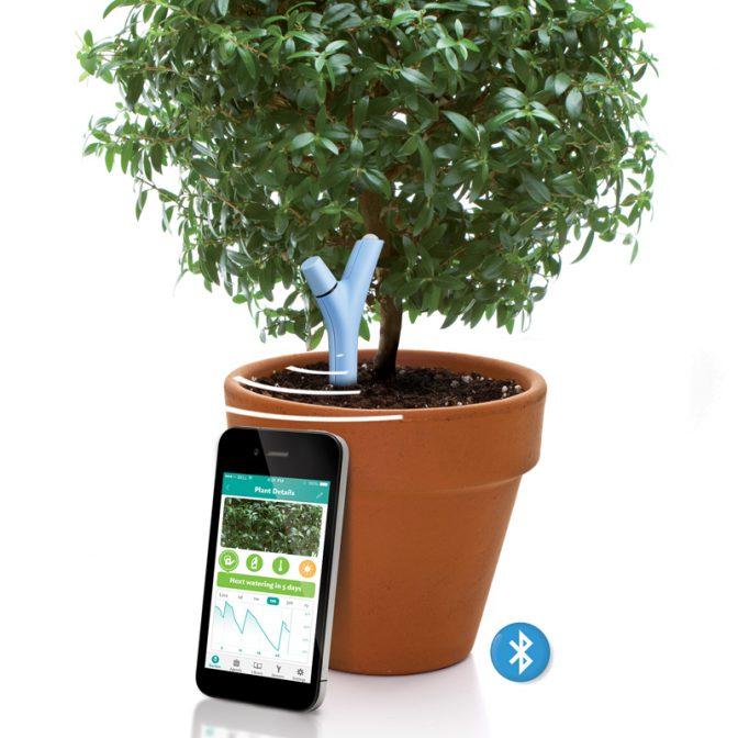 賢いモニタリングデバイスで、大切な観葉植物を常に健康に