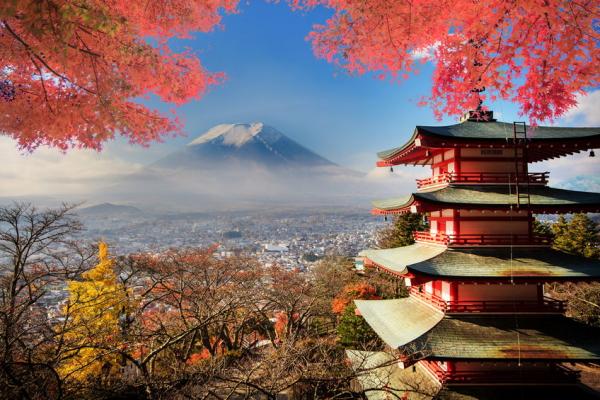 【富士山×紅葉】世界遺産で紅葉を見る至福