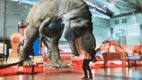 最新技術で古代生物を! ド迫力のAR恐竜が現る