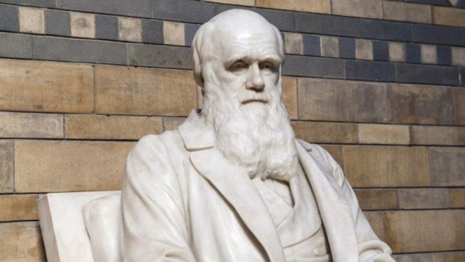 ダーウィンの生涯から学ぶ、イノベーションを生み出すための4箇条