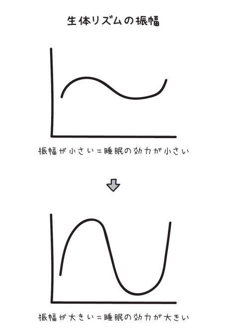 生体リズムの振幅