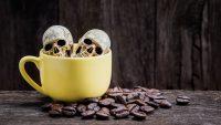 短い時間でカフェインを多量に摂取すると体内で起こること