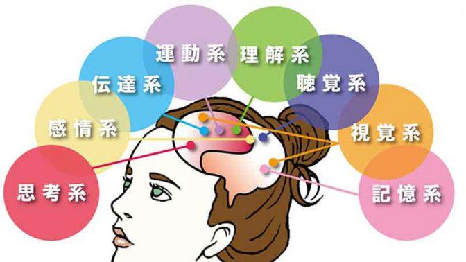 理想の人間になるには、脳を変えるべし! その方法とは