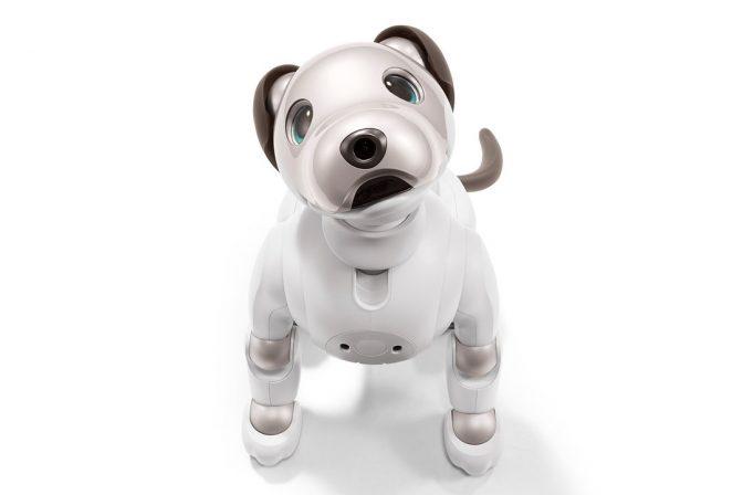 あの犬型ロボットが「aibo」になって12年振りに復活! 気になるスペックを徹底解説