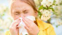 鼻うがいって痛くないの?花粉症に効く、痛くない鼻うがいの方法とは?