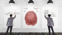 右脳派・左脳派診断は非科学的であるという驚きの研究結果