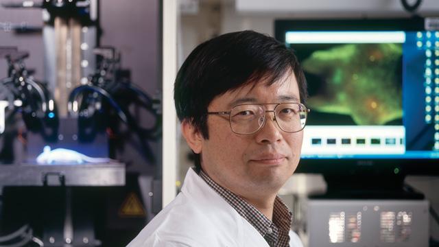 新たながん治療法を日本人が開発