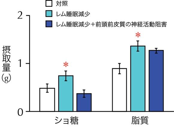 筑波大学が発表した研究成果