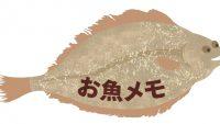 大戸屋 カレイの煮魚定食