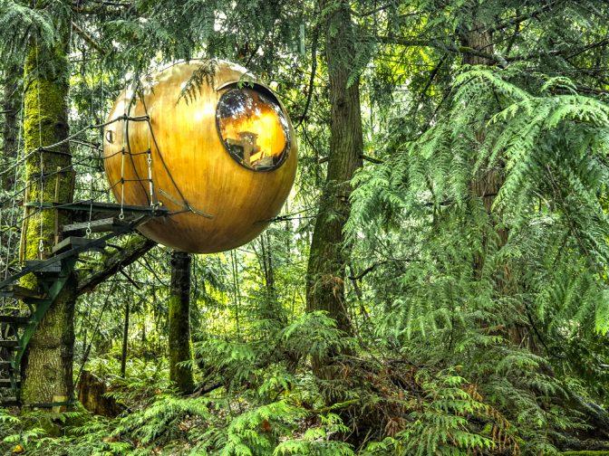 球形の樹上ホテル『Free Spirit Spheres』