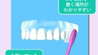 歯磨き嫌いな子どもが毎日歯磨きしたくなるアプリ「歯磨き貯金」が2万ダウンロード突破