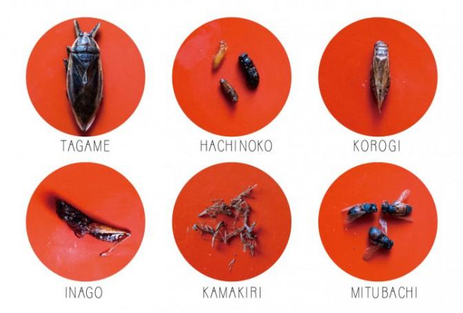 未来の食卓、昆虫料理