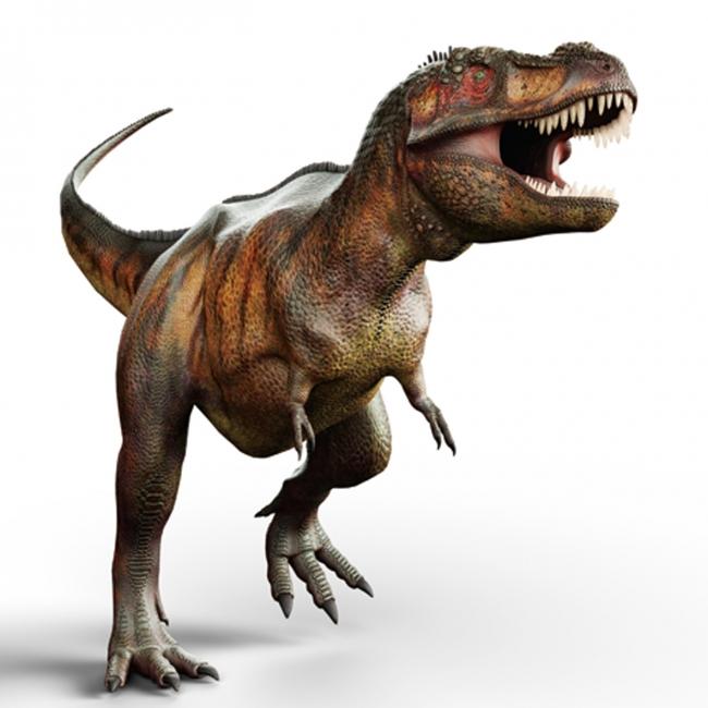 GWは親子でティラノサウルスに会いに行く。4/27~5/9阪急うめだ本店で「恐竜ランド」開催
