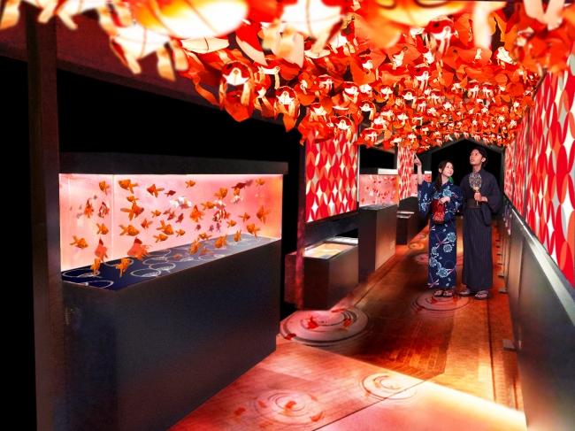 日本最大規模!  すみだ水族館で「東京金魚ワンダーランド」開催中