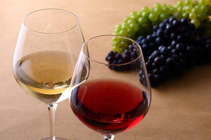 【ワインの知識】悪者にされがちな酸化防止剤の本当の役割